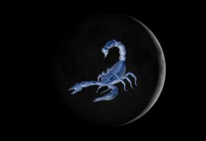 nm-scorpio